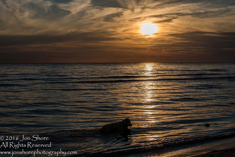 Sunset Tuja, Latvia. Tamron 200m