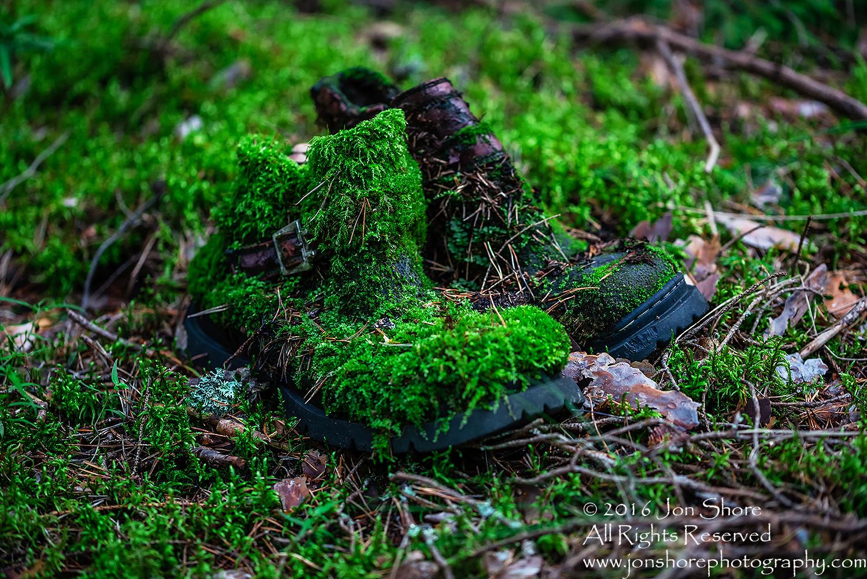 Moss Boots - Summer - Latvia Tamron 70mm Lens