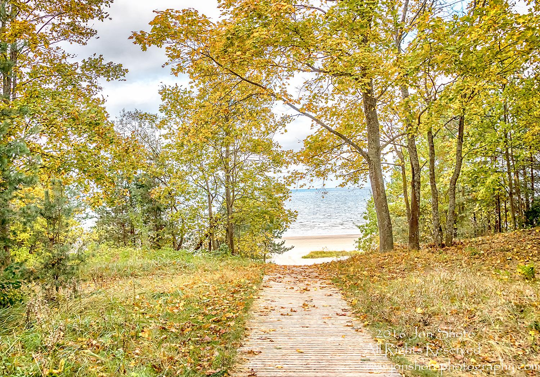 Path to the Beach, Jurmala, Latvia. Nikkor 28mm