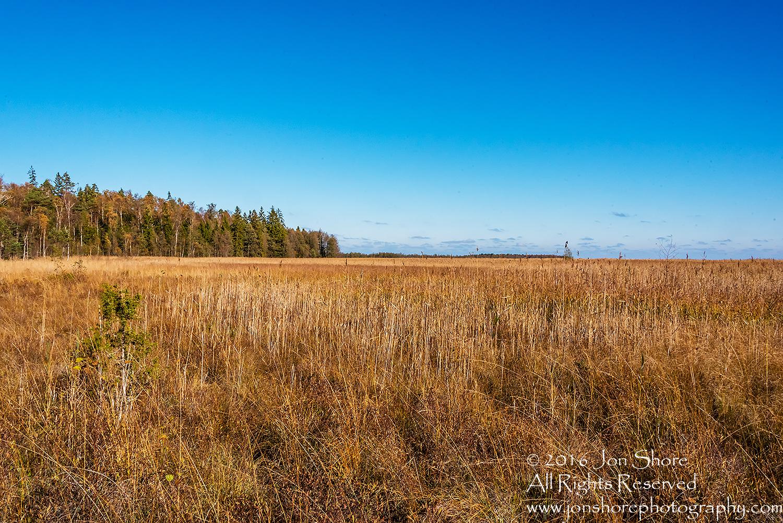 Kemeri National Park, Latvia. Nikkor 28mm