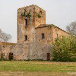 San Marco Spring Italy April 2018 by Jon Shore 72dpi-9187