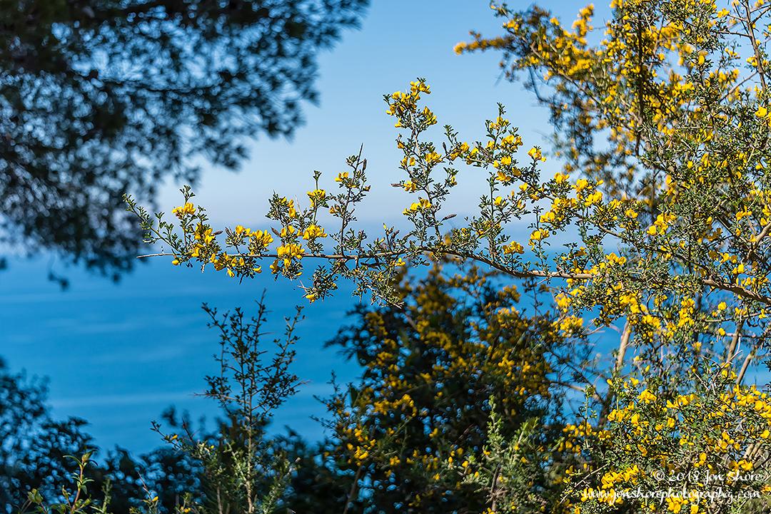 Spring Santa Maria di Castellabate Italy