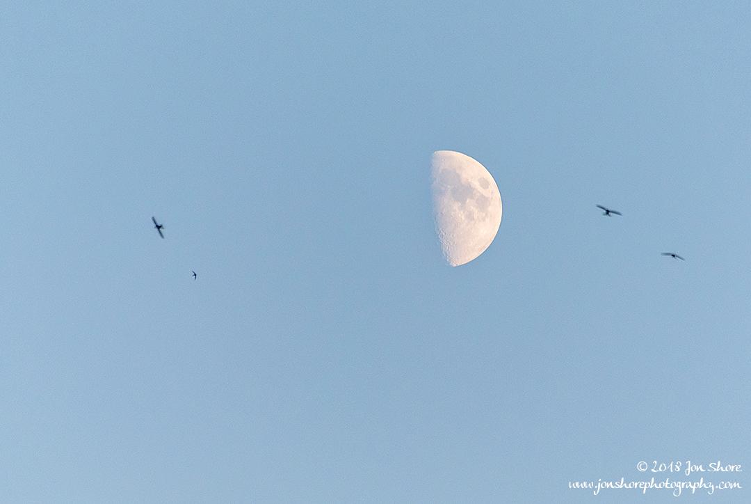 Moon Riga Latvia July 2018