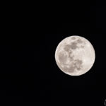 Super Moon Jon Shore February 2019 72dpi-7120