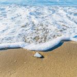 Tile on a beach San Marco di Castellabate Italy Jon Shore December 2018 72dpi-8999