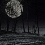 Super Moon Jurmala Latvia by Jon Shore February 2020 72dpi-7959