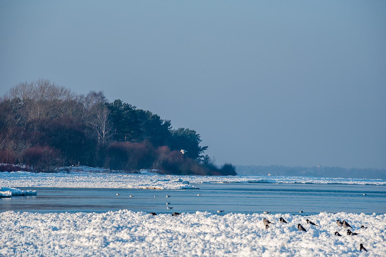Winter at a Frozen Baltic Sea Beach. Nikkor 300mm